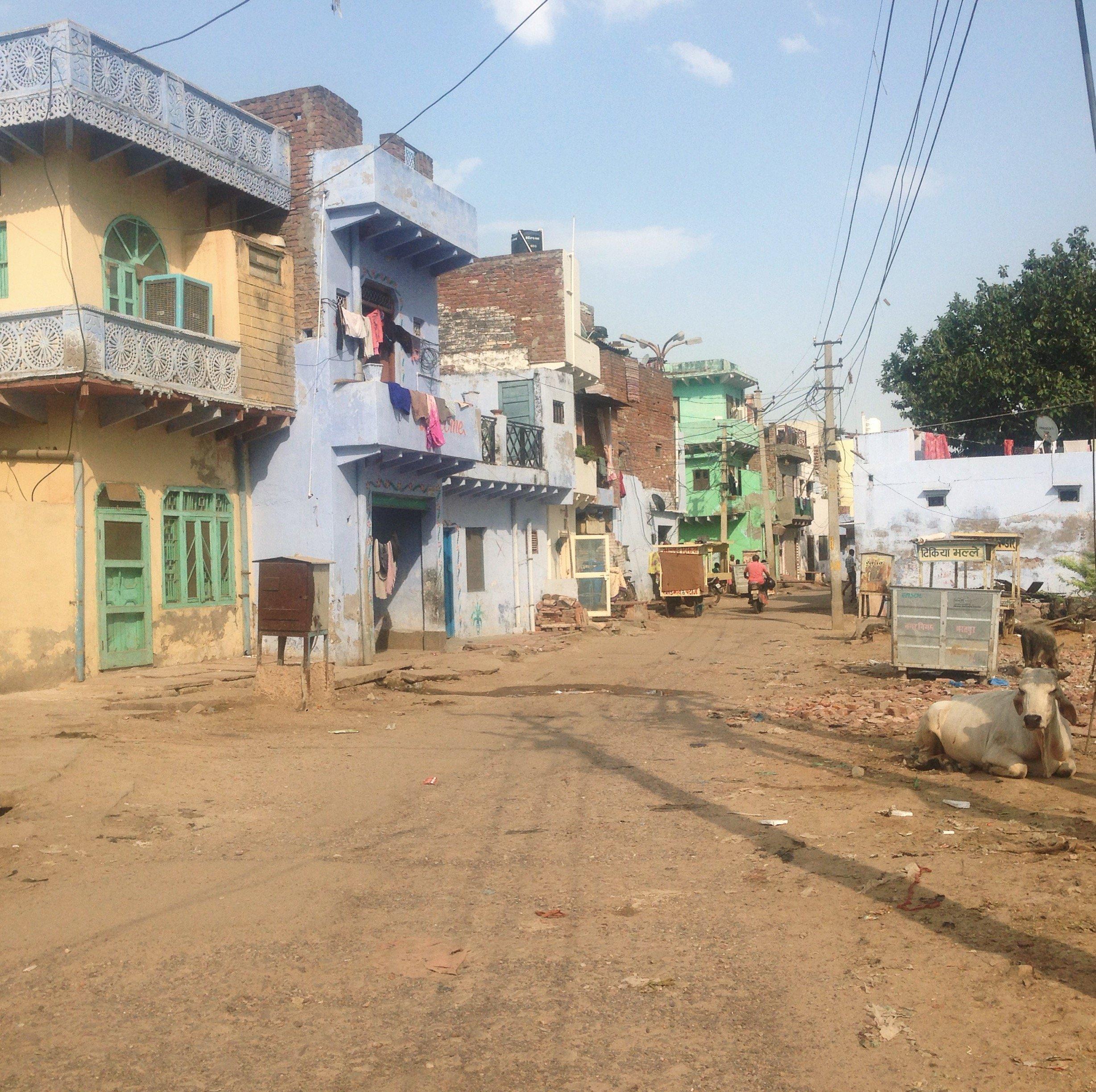 Rue à Bharatpur