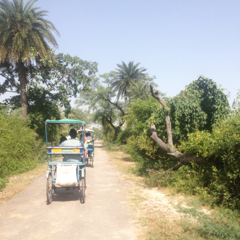 Bharatpur à velo