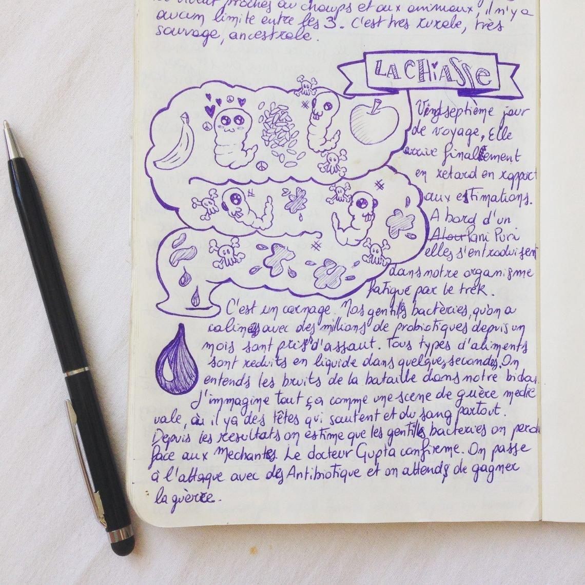 Écriture - L'écriture